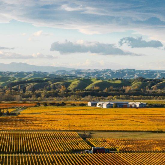 Craggy Range Autumn Image (Source Craggy Range Facebook Page)